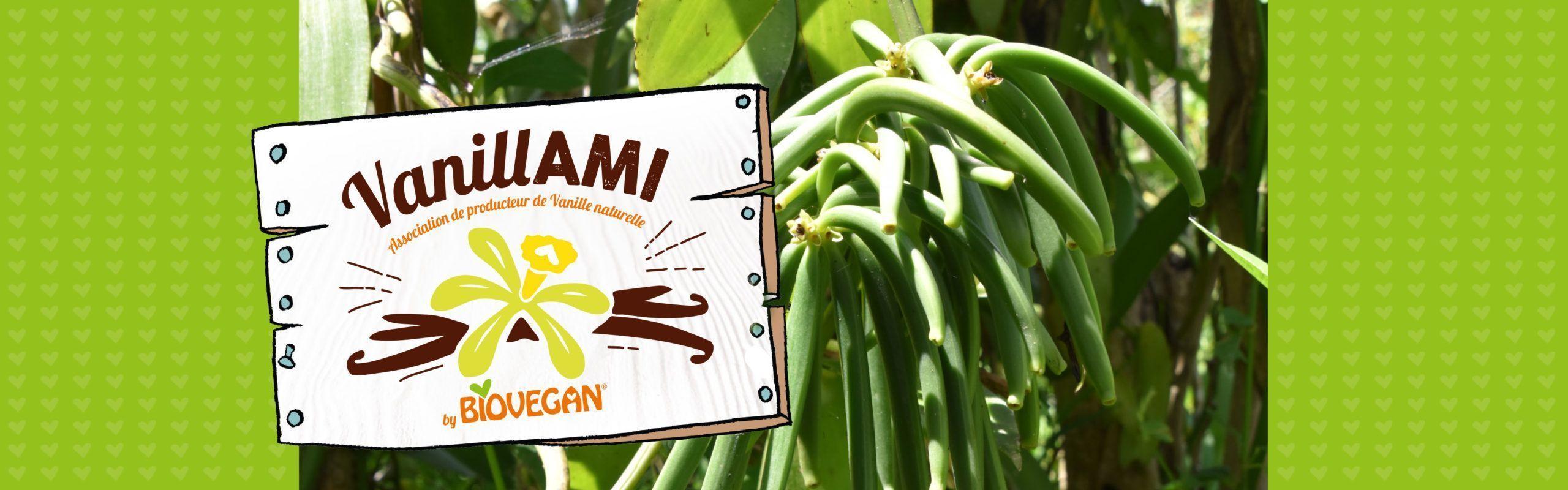 Logo der VanillAMI Kooperative